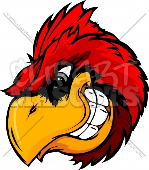 Cardinal Bird Clipart Vector Cartoon