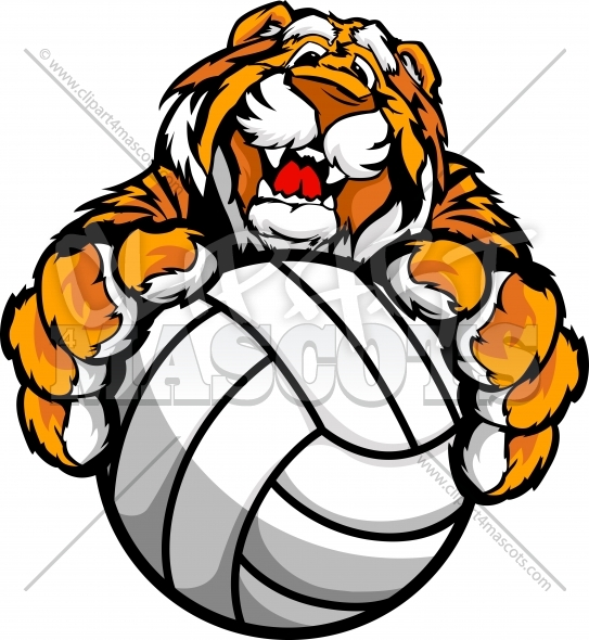 Volleyball Tiger Mascot with Volleyball Ball in Paws Vector Clipart Image
