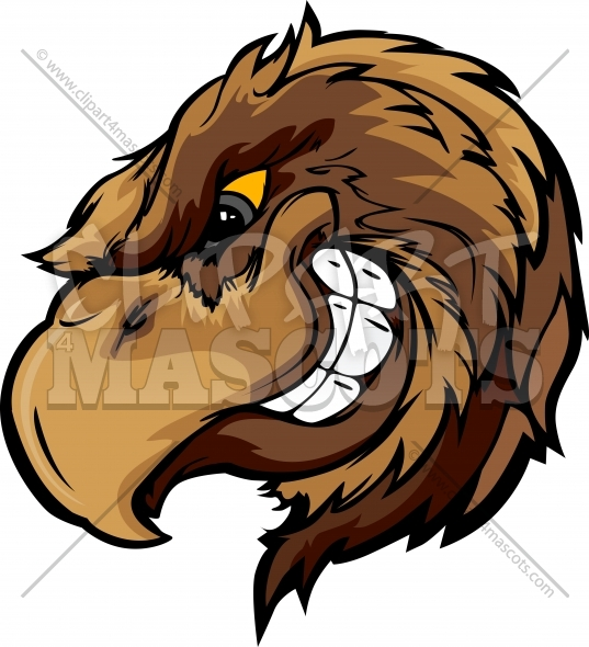 Hawk Mascot Cartoon Graphic Vector Cartoon