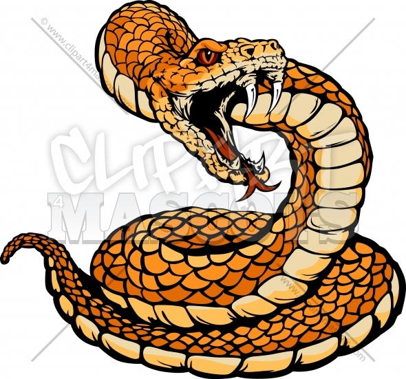Striking Viper or Coiled Rattle Snake Body Vector Clipart Image