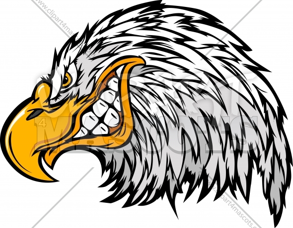 Cartoon Eagle Head Vector Illustration