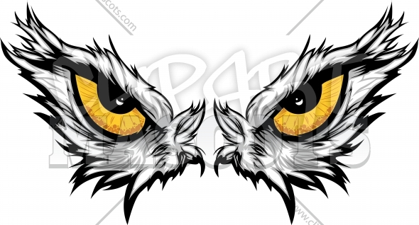 Eagle Eyes Vector Illustration