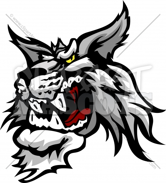 Wildcat Mascot Graphic Vector Cartoon