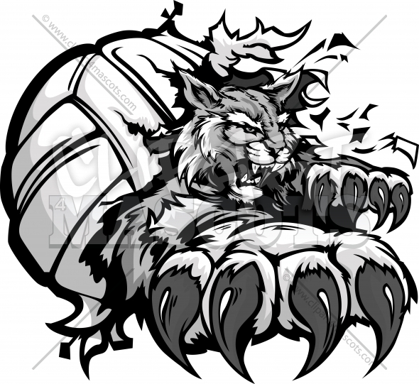 Wildcat Volleyball Clipart – Vector Mascot with Claws tearing a Volleyball